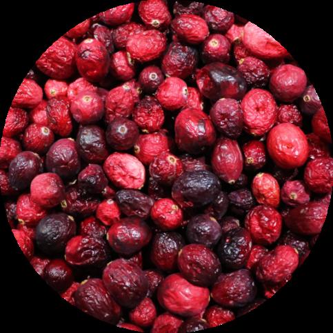 Cranberries2b