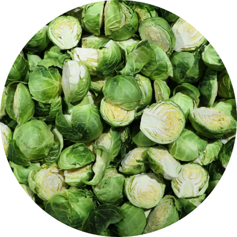 BrusselSprouts2b