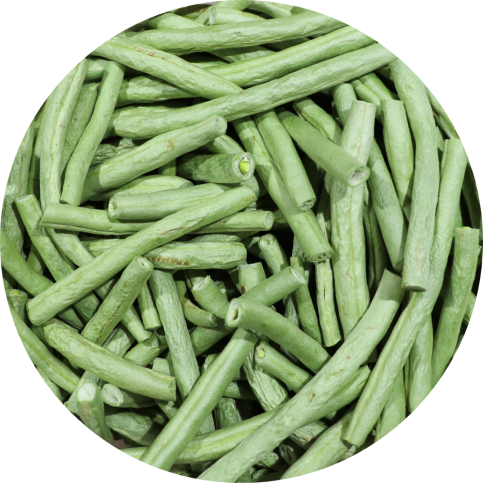 String Beans1